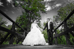 Bride and groom holding hands abstract Stock Photo