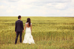 Bride and groom holding hands in the fields Royalty Free Stock Photo