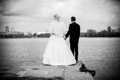 Bride and groom holding hands and looking on river Royalty Free Stock Photography