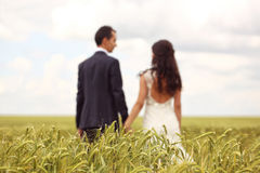 Bride and groom holding hands. Bride and Groom posing in the fields Stock Image