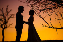 Bride and groom holding hands in the sunset Stock Photos