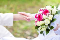 Bride and groom are holding hands Royalty Free Stock Photography