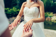 Bride and groom holding hands together Stock Photography