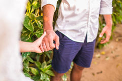 Bride and groom holding his hands Royalty Free Stock Photography