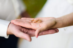 Bride and groom holding rings. Close up of brode and groom's hand holding two wedding rings Stock Image