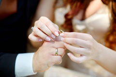 Bride and groom holding their wedding rings Stock Photo