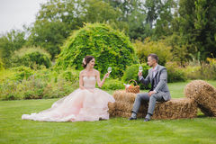 Bride and groom holding wine glasses Stock Photos