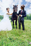 Bride, groom and horse Royalty Free Stock Photography