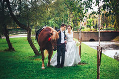 Bride and Groom with Horse Stock Photos