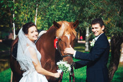 Bride and Groom with Horse Royalty Free Stock Photo