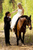 Bride and groom with horses Royalty Free Stock Photo