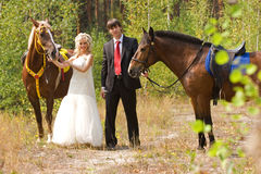 Bride and groom with horses Royalty Free Stock Photography