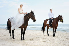 Bride and groom on a horses by the sea Royalty Free Stock Photography