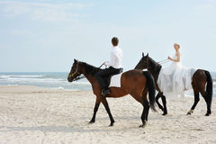 Bride and groom on a horses by the sea Stock Photos