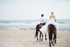 Bride and groom on a horses by the sea. Beach wedding: bride and groom on a horses by the sea Royalty Free Stock Photo