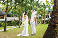 Bride and groom in the hotel on a tropical island. Stock Photos
