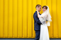 Bride and groom hugging against wall Stock Photos