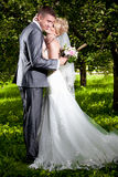 Bride and groom hugging on alley at park Stock Images