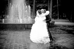 Bride and groom hugging in park against fountain Royalty Free Stock Photography