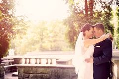 Bride and groom hugging in the park. Stock Images