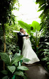 Bride and groom hugging on path under palm Stock Images
