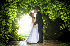 Bride and groom hugging under trees Stock Photo