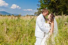 Bride and groom huggling at green field Royalty Free Stock Image