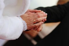 Bride and groom joined hands on wedding Royalty Free Stock Photography