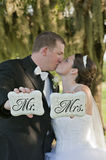 Bride and Groom just married Royalty Free Stock Photography