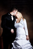 Bride and groom kiss Stock Image