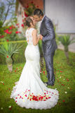 Bride and groom, kiss, detail with rose Royalty Free Stock Image