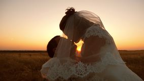 The bride and groom kiss and hug at sunset. romantic couple in love kissing at sunset. The concept of a happy family stock video footage