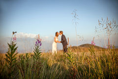 Bride and groom kiss in mountains Royalty Free Stock Images