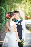The bride and groom kiss Royalty Free Stock Image