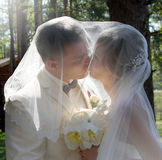 Bride and groom, kiss stock images