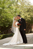Bride and Groom Kissing Royalty Free Stock Photography