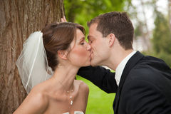Bride and groom kissing. Beautiful bride and groom kissing each other with passion Royalty Free Stock Photo