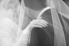 Bride and groom kissing. The Bride and groom kissing Stock Photos