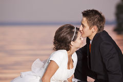 Bride and groom kissing Stock Image
