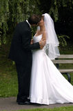 Bride and Groom kissing. A kissing couple Royalty Free Stock Photography