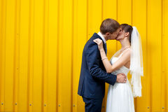 Bride and groom kissing against Stock Photos
