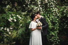 Bride and groom kissing against big bush with flowers Royalty Free Stock Photos