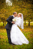 Bride and groom kissing at autumn park Stock Image