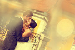 Bride and groom kissing and embracing in the city Stock Images