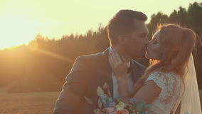 Bride and groom kissing in a field with green lawn in the setting sun. Newlyweds in a field at sunset summer day, embrace and kiss each other on the background stock video footage