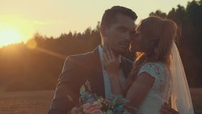 Bride and groom kissing in a field with green lawn in the setting sun. stock footage