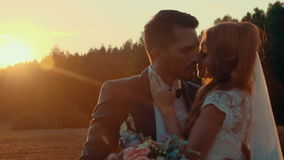 Bride and groom kissing in a field with green lawn in the setting sun. Newlyweds in a field at sunset summer day, embrace and kiss each other on the background stock video