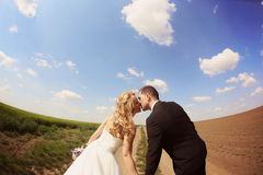 Bride and groom kissing in the fields Stock Photos