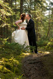 Bride and Groom Kissing in Forest Stock Images