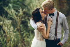 Bride and groom kissing. In the forest royalty free stock images
